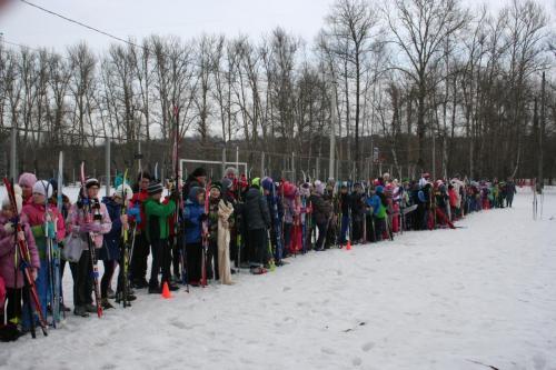 Сдача норм ГТО (лыжные гонки) среди учащихся 2-4 классов Яхромской СОШ №2 03.03.2017
